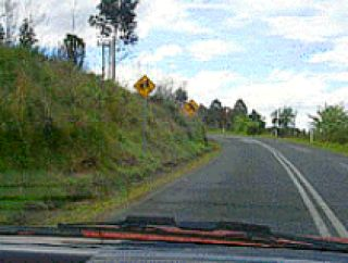 When the road is marked this way are you permitted to cross the lines and overtake?